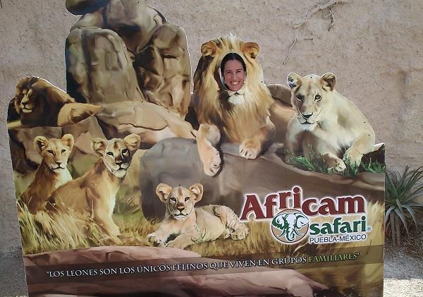 Africam Safari Puebla Pata de Perro Mexico 3
