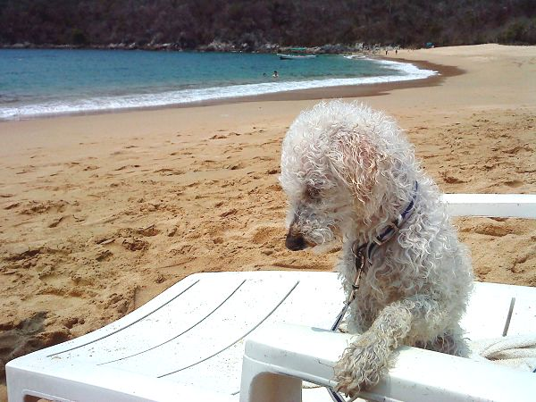 huatulco oaxaca mexico playa isi