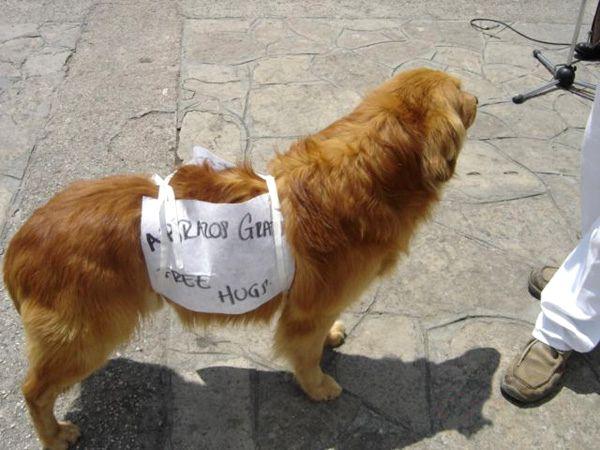 Polo de Paz peace polo san cristobal de las casas chiapas mexico pata de perro blog de viajes shintokai 17