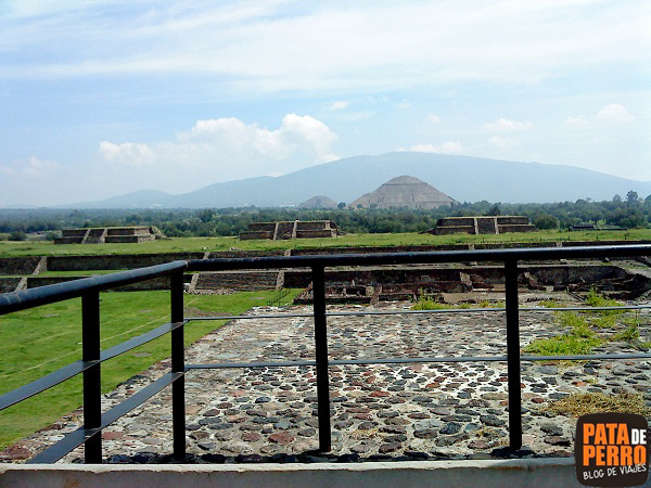 piramides teotihuacan mexico pata de perro 8