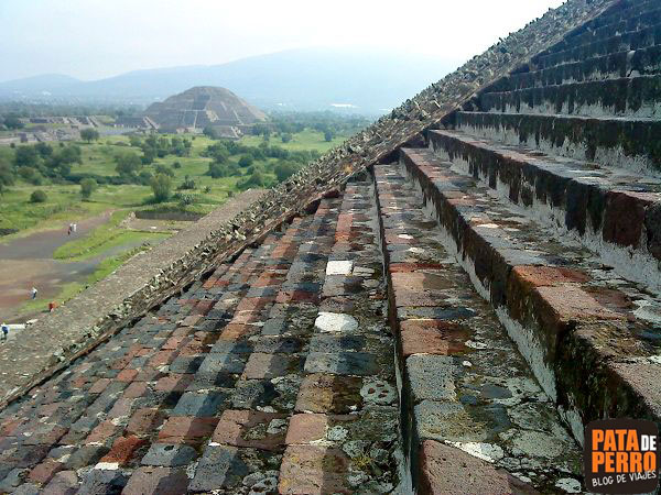 teotihuacan-piramides-mexico-pata-de-perro-5