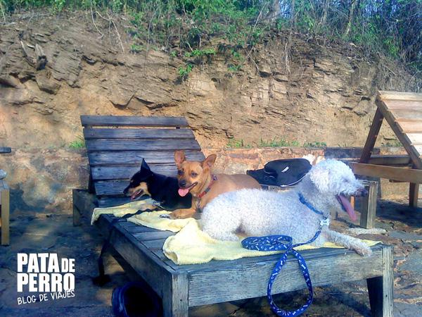 casa mermejita mazunte oaxaca mexico pata de perro blog de viajes7