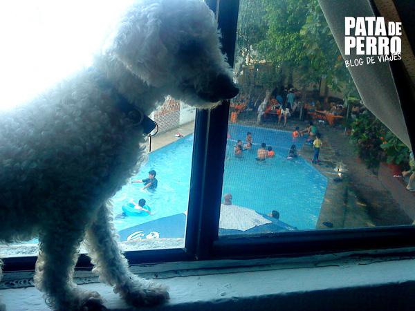 condo hote los girasoles huatulco oaxaca mexico pata de perro blog de viajes11