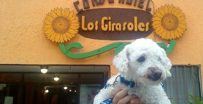 Hotel Los Girasoles / Huatulco, Oaxaca, México