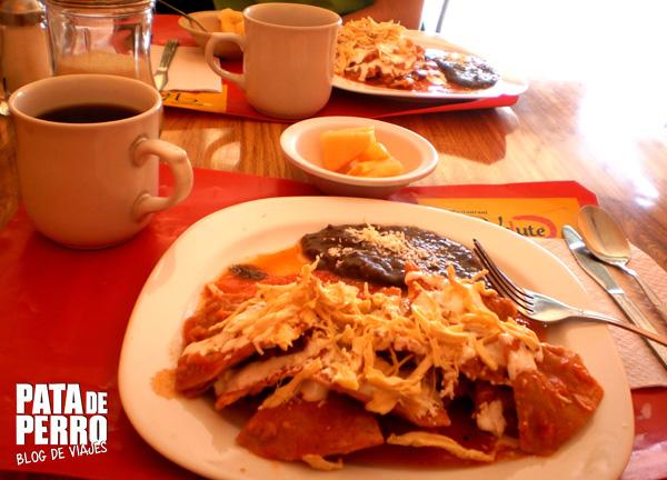 desayuno mexico pata de perro blog de viajes