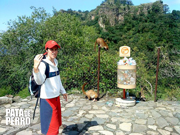 tepozteco tepoztlan morelos mexico pata de perro blog de viajes11