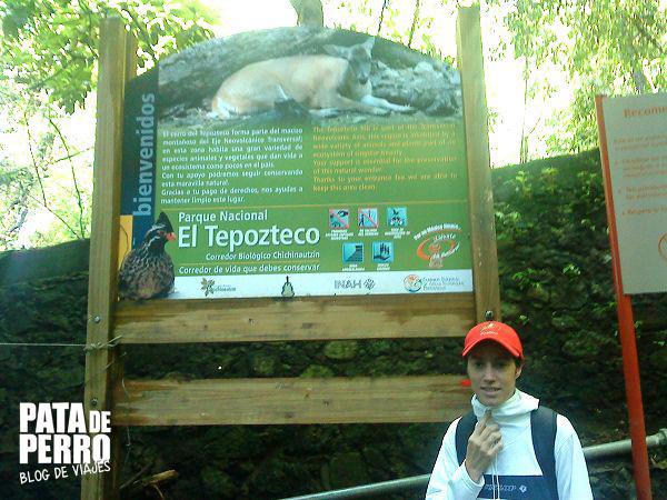 tepozteco tepoztlan morelos mexico pata de perro blog de viajes3