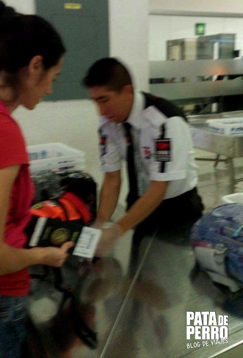 viajar con perro en cabina del avion pata de perro blog de viajes mexico 07.JPG