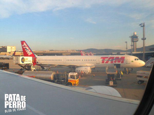 viajar con perros en cabina avion TAM pata de perro blog de viajes mexico.JPG