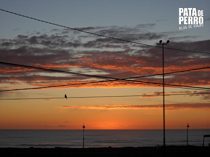 amanecer_en_tiempo_real_patadeperro_blogdeviajes mar del plata argentina