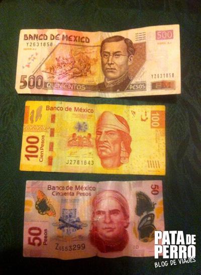 durabilidad de los billetes en argentina02 pata de perro blog de viajes