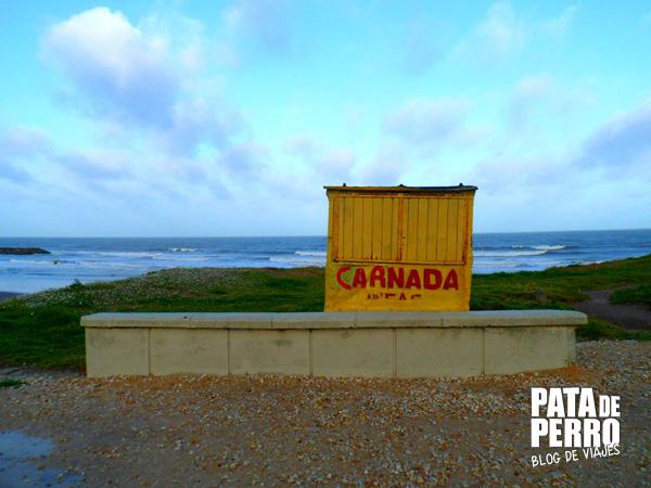 fria tarde de octubre en mar del plata argentina pata de perro blog de viajes 03