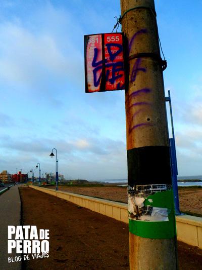 fria tarde de octubre en mar del plata argentina pata de perro blog de viajes 08