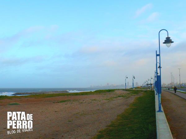 fria tarde de octubre en mar del plata argentina pata de perro bog de viajes 11