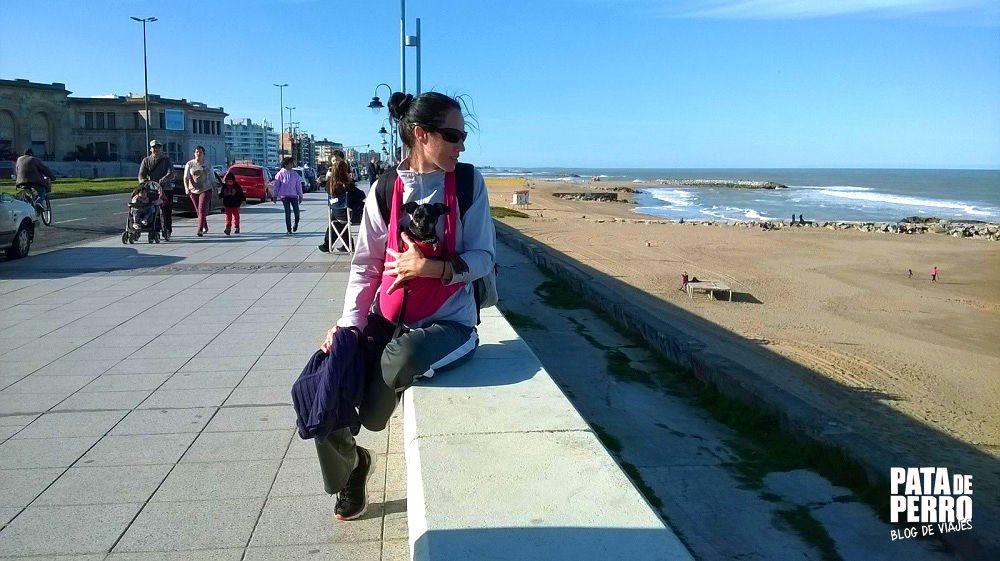 un mes en argentina pata de perro blog de viajes2.JPG