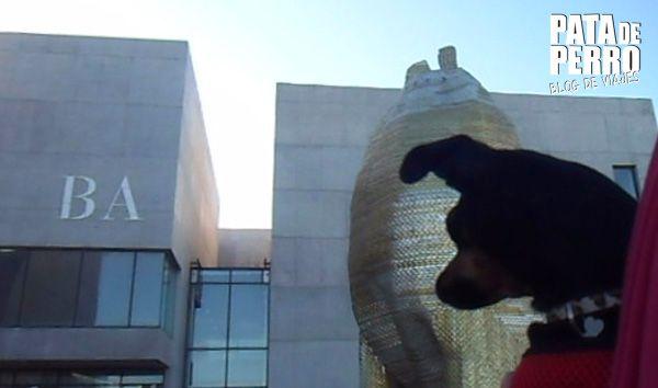 un mes en argentina pata de perro blog de viajes3