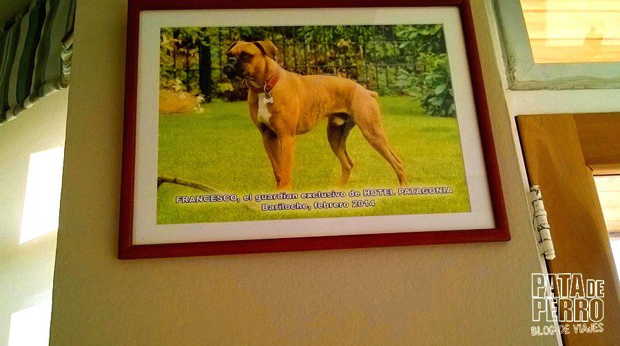 francesco patagonia hotel pata de perro blog de viajes argentina bariloche09