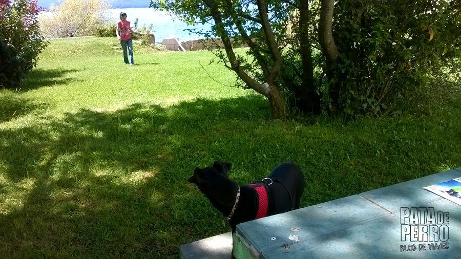 hotel patagonia bariloche argentina pata de perro blog de viajes22