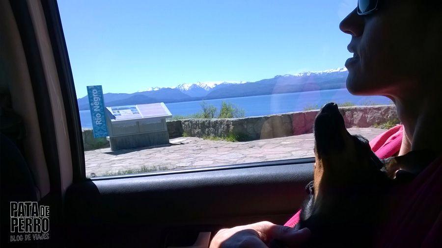 viajar con lupita en una argentina que no acepta perros04