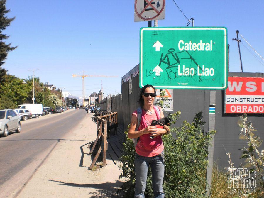 viajar con lupita en una argentina que no acepta perros07