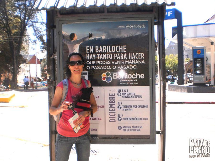 viajar con lupita en una argentina que no acepta perros09