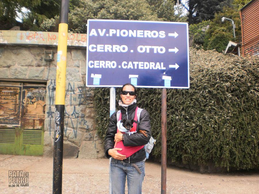 viajar con lupita en una argentina que no acepta perros11
