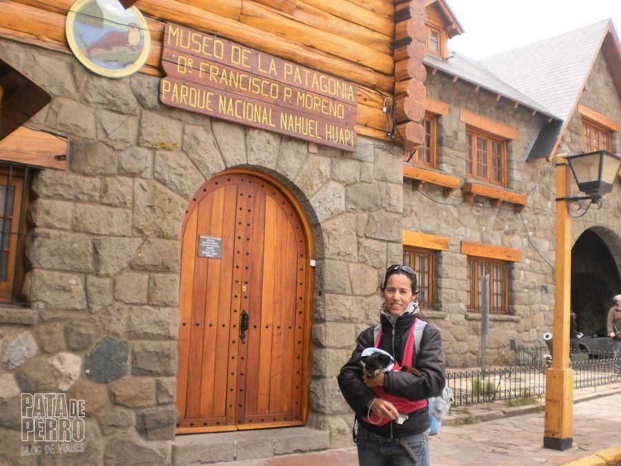 viajar con lupita en una argentina que no acepta perros13
