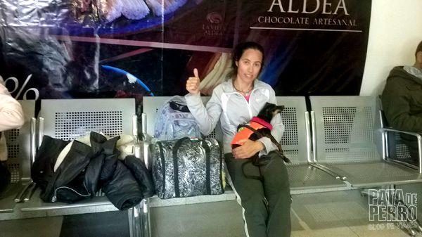 despedida bariloche patagonia argentina pata de perro blog de viajes10