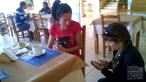 despedida bariloche patagonia argentina pata de perro blog de viajes2