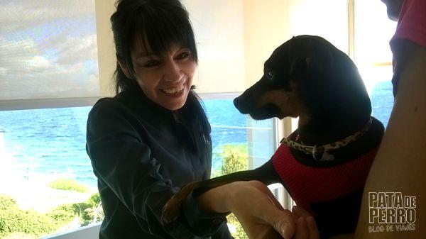 despedida bariloche patagonia argentina pata de perro blog de viajes4