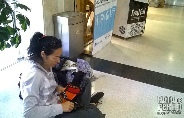 despedida bariloche patagonia argentina pata de perro blog de viajes8