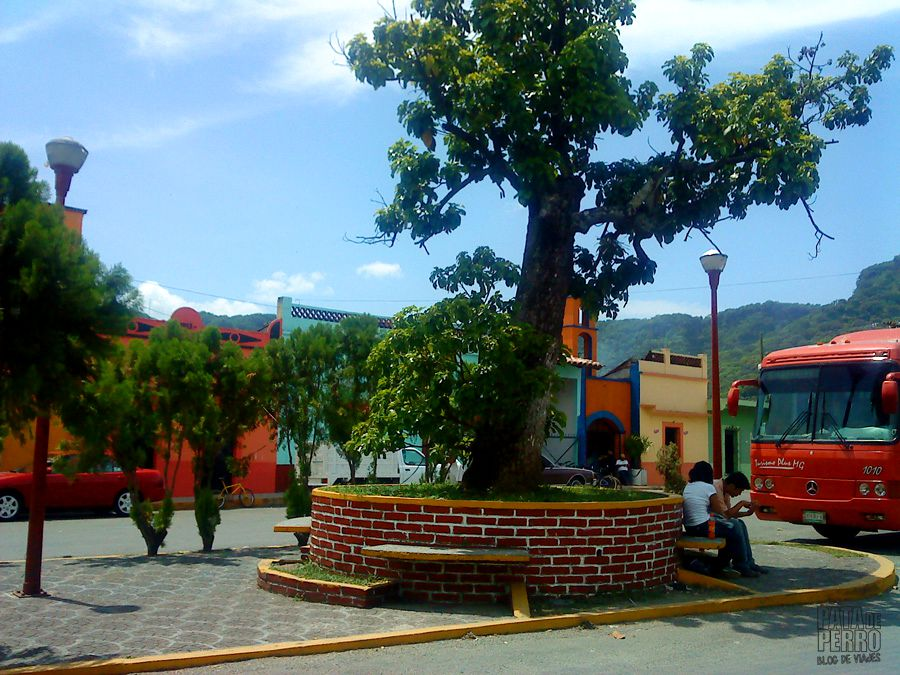 jalcomulco tras la esmeralda perdida pata de perro blog de viajes veracruz mexico6