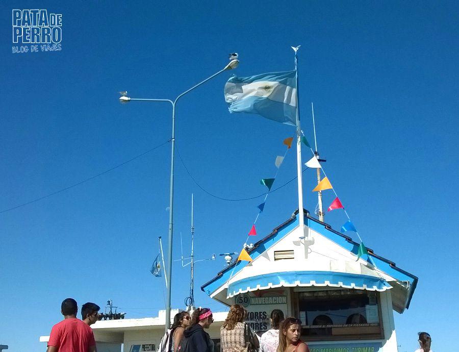 puerto mar del plata argentina pata de perro blog de viajes11