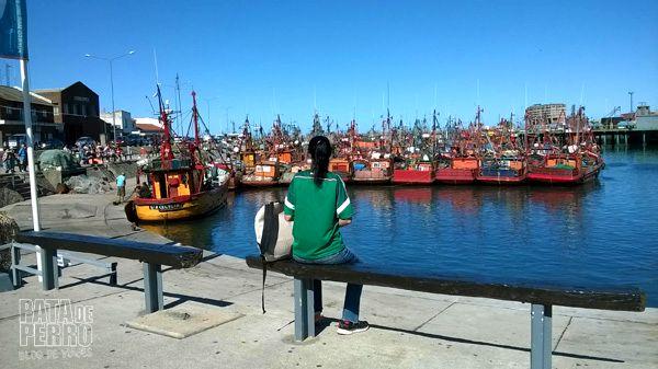 puerto mar del plata argentina pata de perro blog de viajes4
