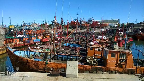 puerto mar del plata argentina pata de perro blog de viajes5