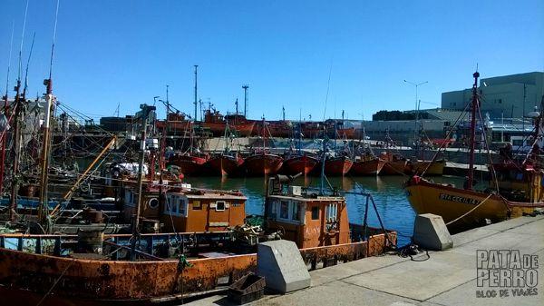 puerto mar del plata argentina pata de perro blog de viajes6
