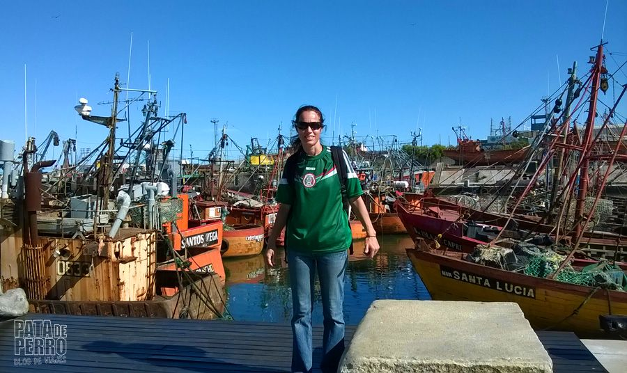 puerto mar del plata argentina pata de perro blog de viajes7
