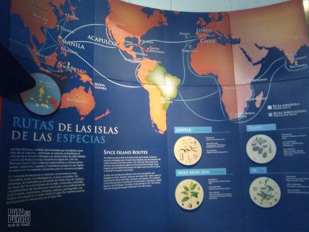 museo internacional del barroco puebla mexico pata de perro blog de viajes08
