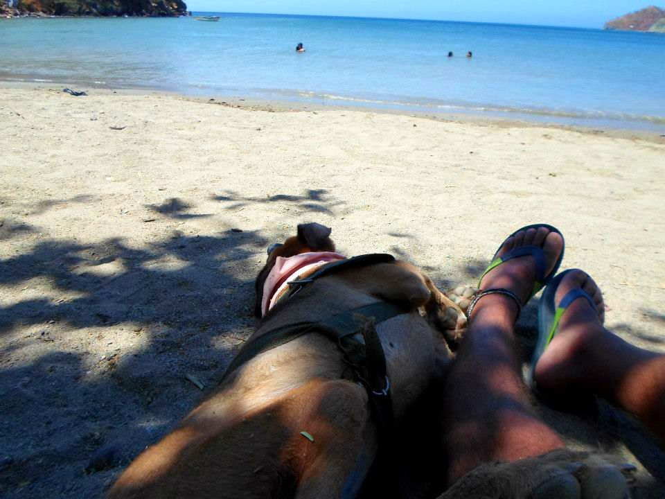 de las calles de lima a la aventura por toda america pata de perro blog de viajes trompa y claudio13