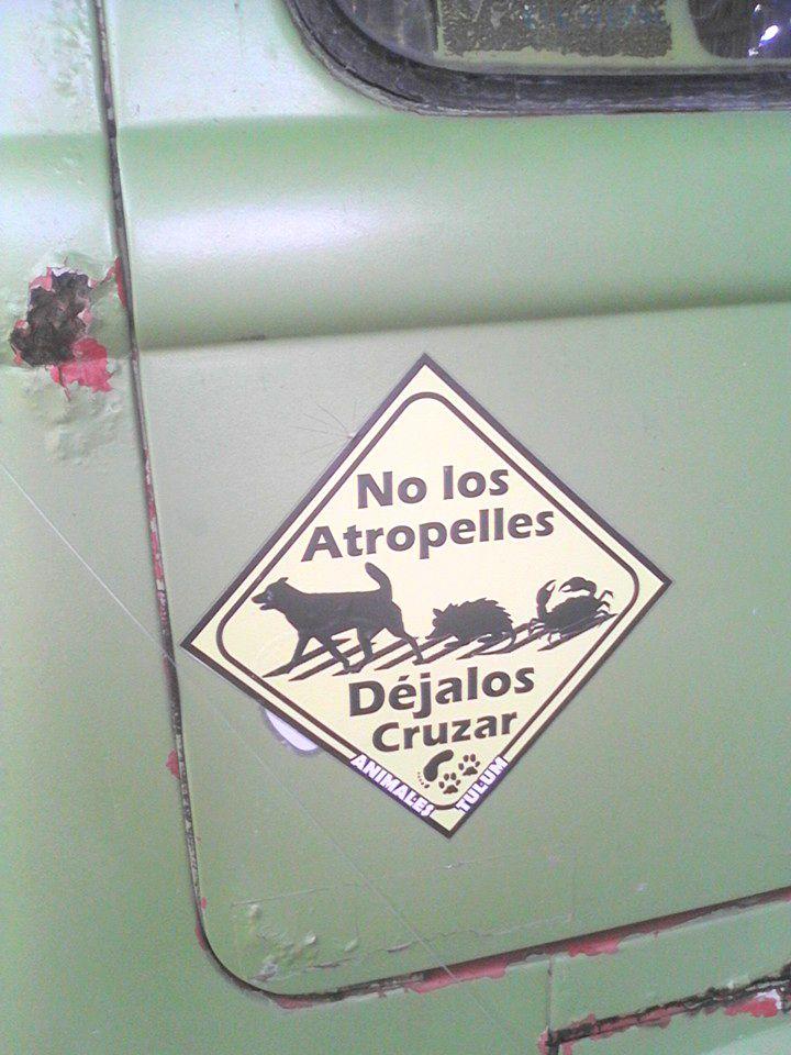 de las calles de lima a la aventura por toda america pata de perro blog de viajes trompa y claudio24