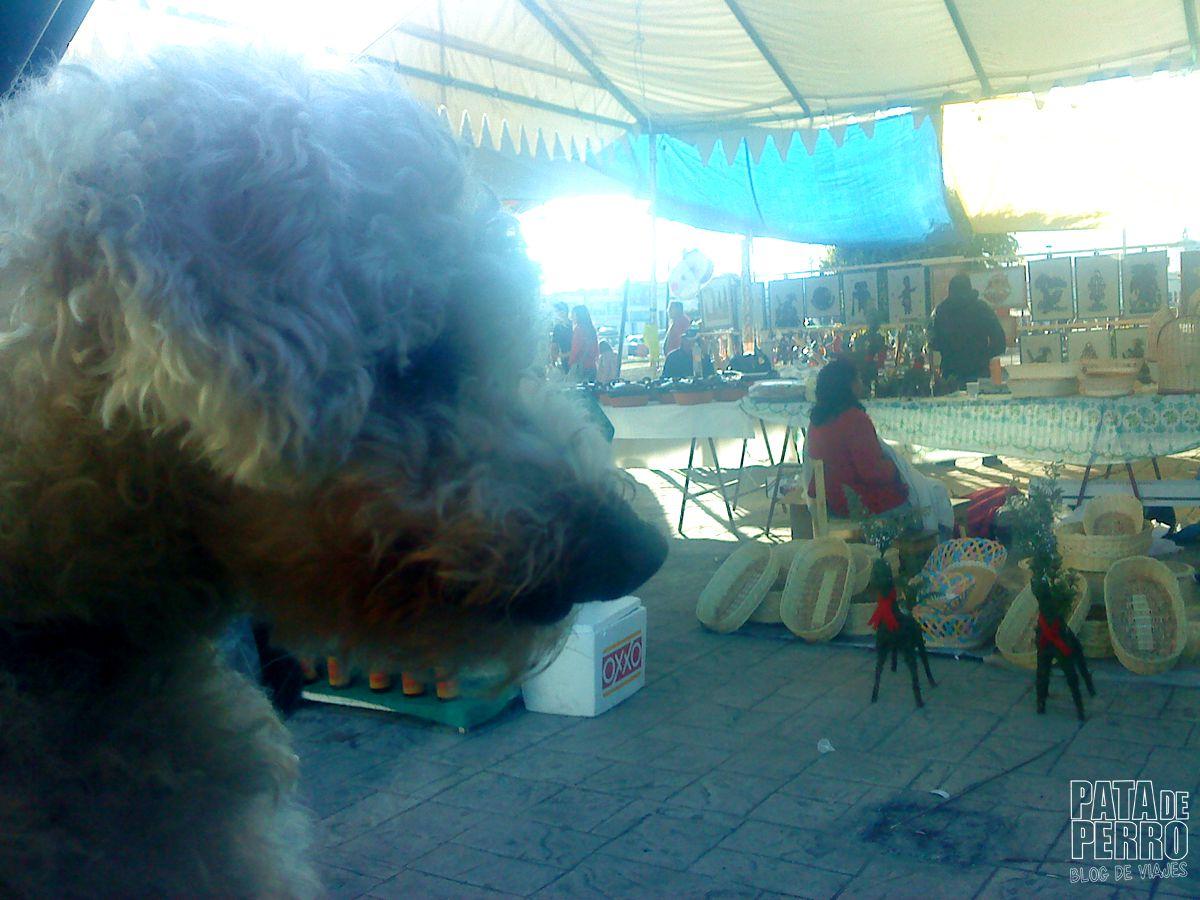 huejotzingo puebla mexico pata de perro blog de viajes17