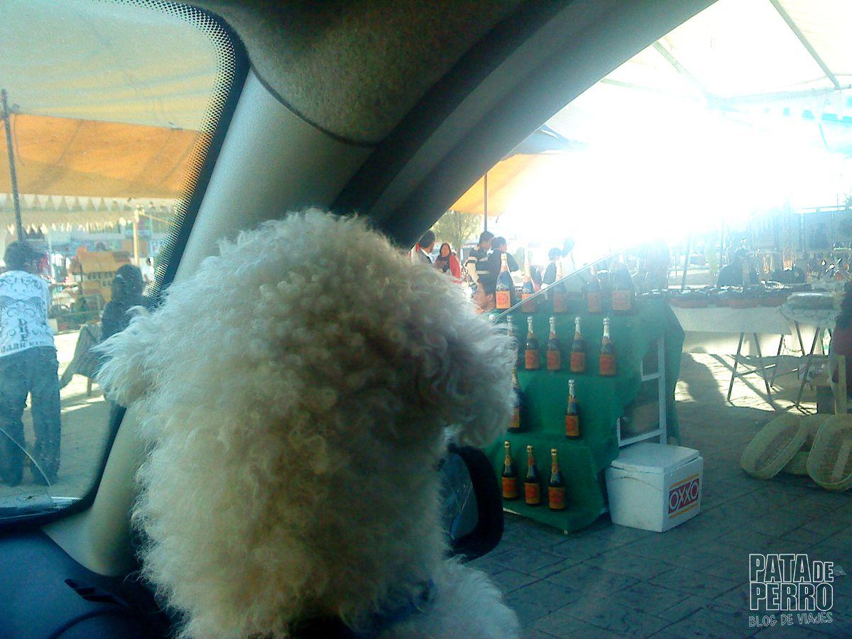 huejotzingo puebla mexico pata de perro blog de viajes18