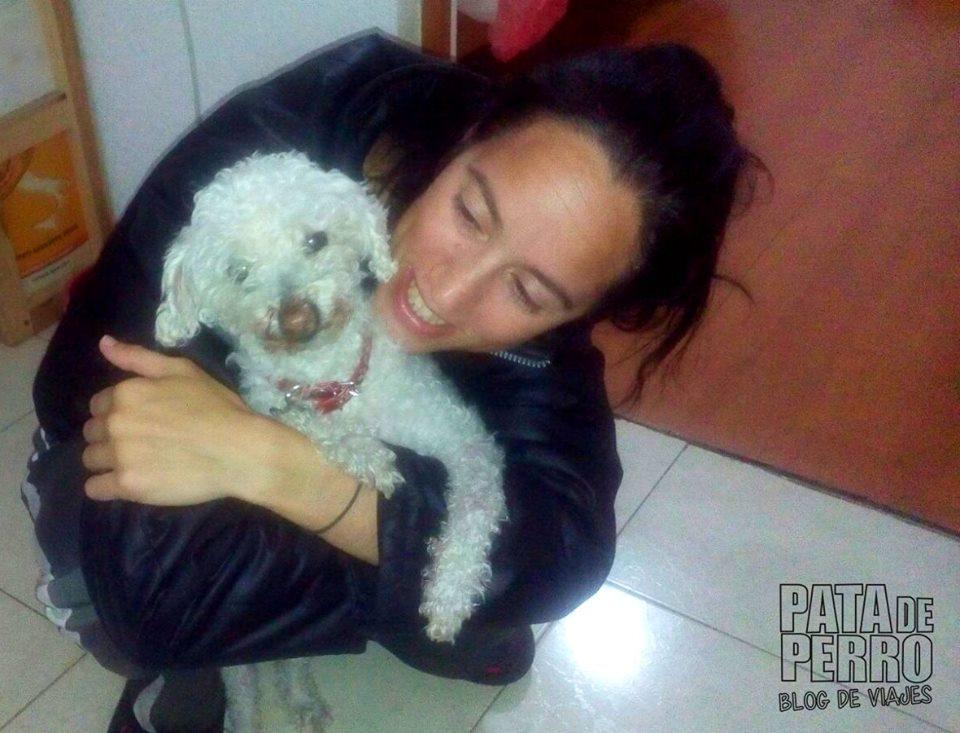 servicios funerarios para perros puebla mexico pata de perro blog de viajes13