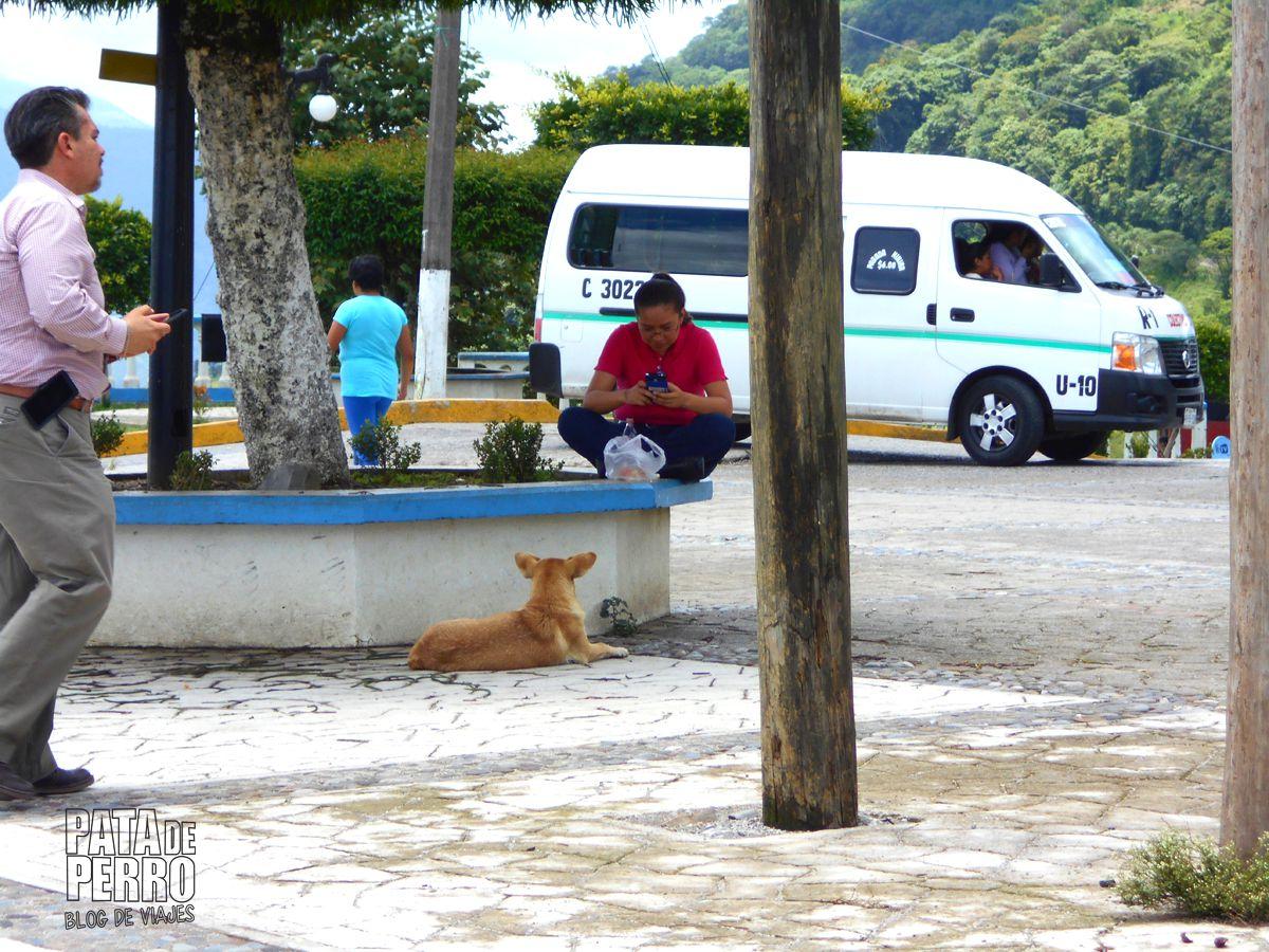 xicotepec puebla con isi virgen gigante mexico pata de perro blog de viajes09