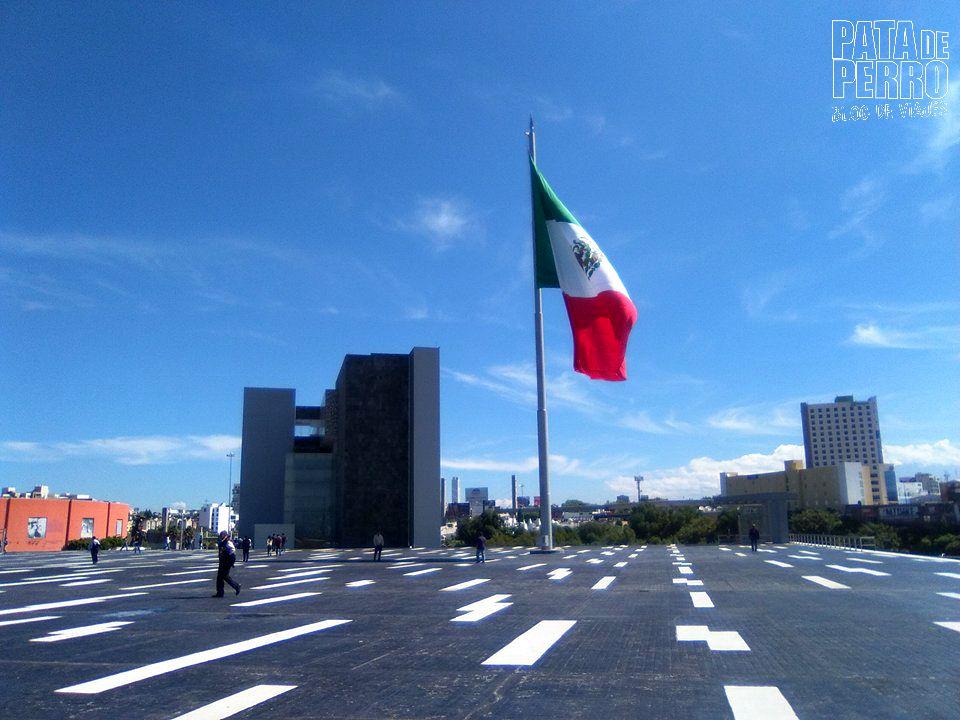 carta de no antecedentes penales pata de perro blog de viajes puebla mexico07