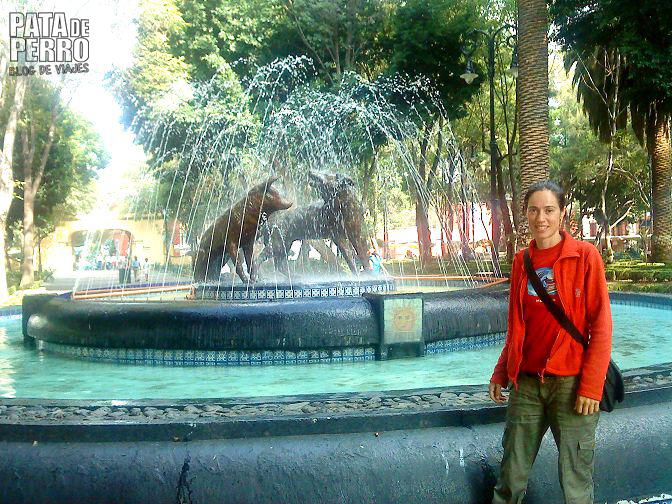 coyoacan mi primer amor en mexico pata de perro blog de viajes