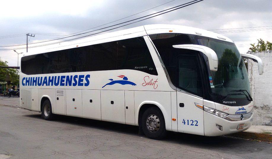 viajar con perros en autobus en mexico pata de perro blog de viajes puebla autobuses chihuahuenses 04