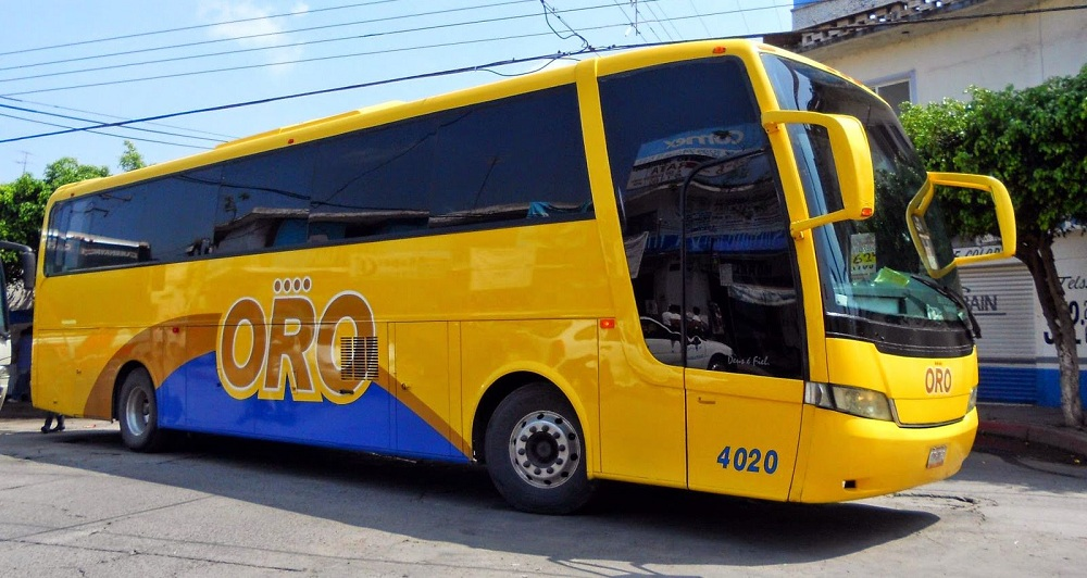 viajar con perros en autobus en mexico pata de perro blog de viajes puebla autobuses oro cuernavaca tlaxcala guerrero02