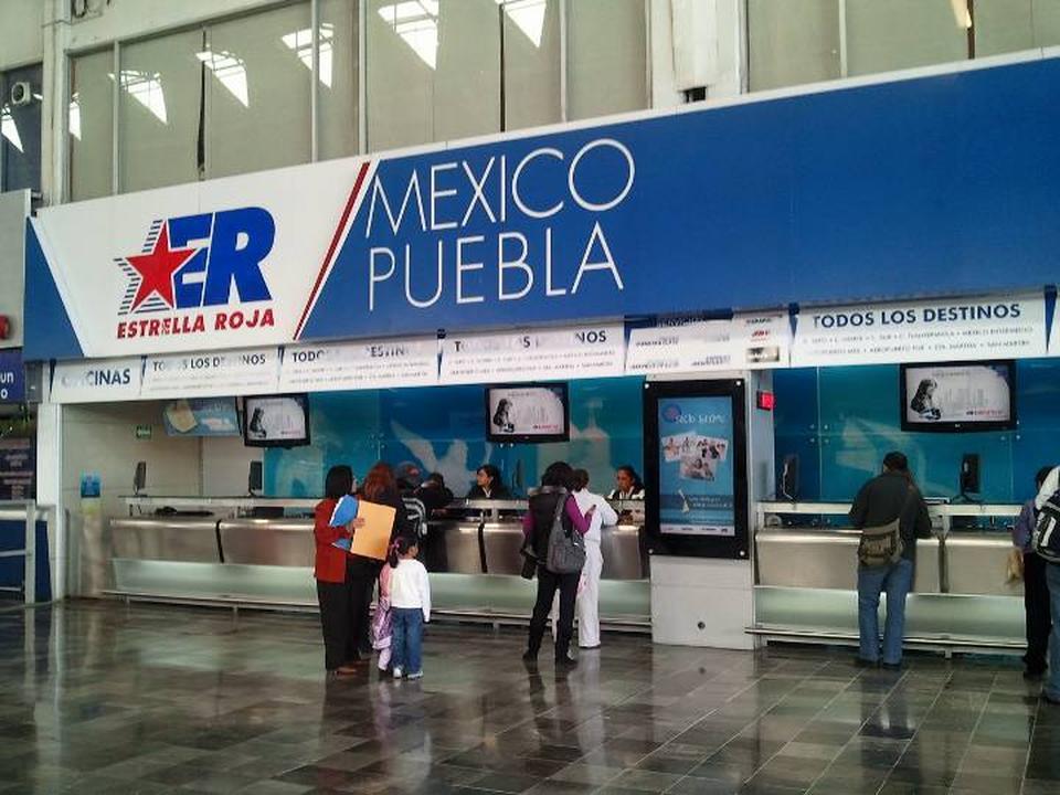 viajar con perros en autobus en mexico pata de perro blog de viajes puebla
