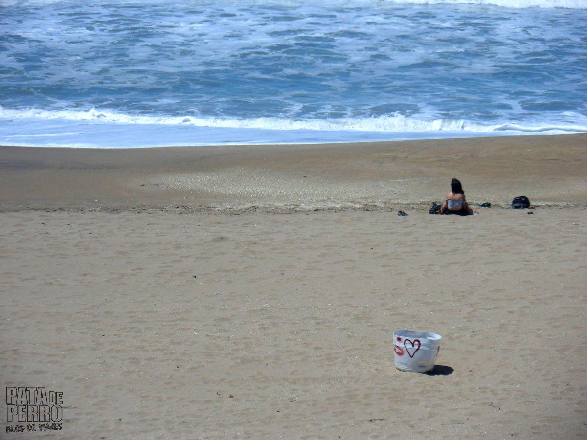 costa-norte-mar-del-plata-argentina-pata-de-perro-blog-de-viajes12